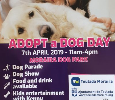 """Adopt a dog Day"" in Moraira, Sunday April 7th"
