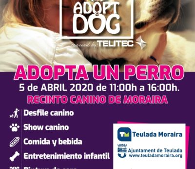 Adopt a dog day, Moraira, April 5th.