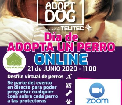 Virtual Adopt a dog day, Sunday, June 21, 11 AM – 2 PM.