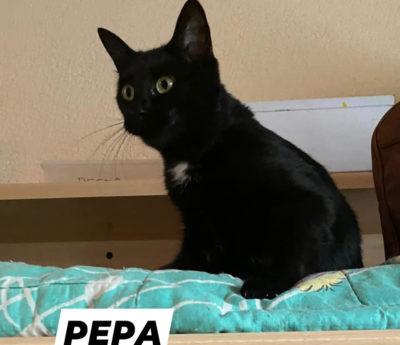 Pepe y Pepa