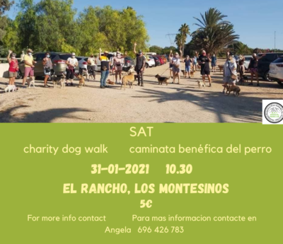 Charity Dog Walk, Torrevieja, Sunday 31st January 2021